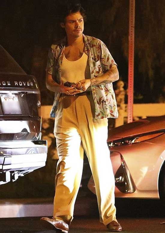 Harry Style Outfit